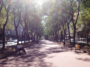 A typical rambla in Barcelona